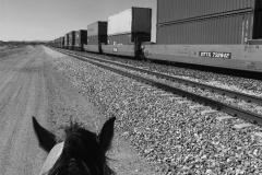 miles-rails